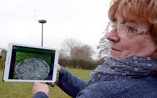 Rees: Neue Webcam gewährt Blick ins Storchennest