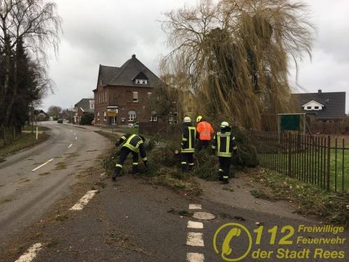 """Feuerwehr Rees – Sturmtief """"Friederike"""": Feuerwehr Rees ist im Stadtgebiet unterwegs"""